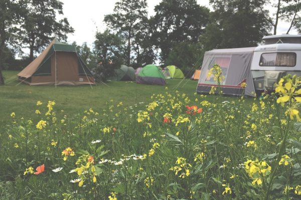 Camping-247